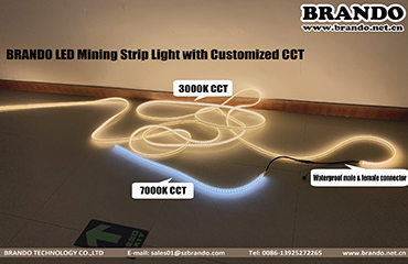 BRANDO Explosion proof LED Mining strip Light with Different CCT