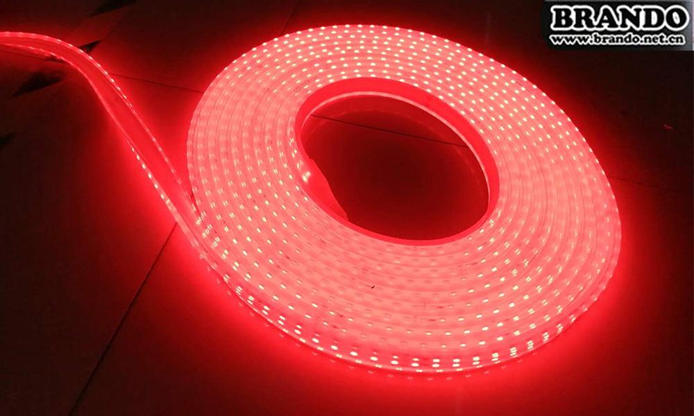 Brando Newest LED Strip Light Looking for Distributors