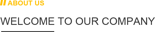 Brando Technology CO.,Ltd